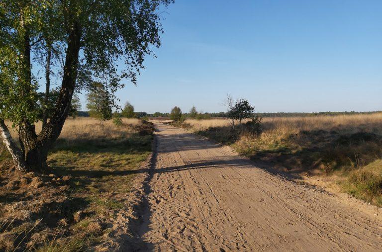 De Ginkelse Heide is een prachtig stuk natuur op fietsafstand van ons Bed & Breakfast. Het heeft daarnaast ook een bijzondere geschiedenis, van een vluchtelingenkamp tijdens de Eerste Wereldoorlog tot de Airborne Luchtlandingen in de Tweede Wereldoorlog.
